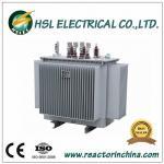 oil immersed 20/0.4kv distribution transformer Manufactures