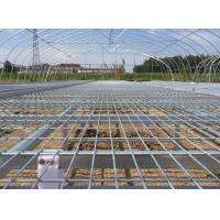Greenhouse Seedbed Welded Mesh Fence Corrosion Resistance 30*130mm Mesh Hole Manufactures