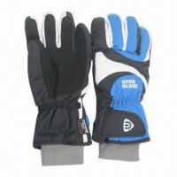 China Ski Gloves with Micro Tricot Lining on sale