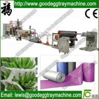 China Mattress or Pillow stuff making Plastic Expanded PE foam machine on sale
