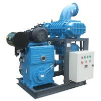 ROOTS BOOSTER AND ROTARY PISTON VACUUM PUMP SYSTEM Manufactures