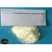 China 1- Testosterone Cypionate Legal Anabolic Steroids CAS 58-20-8 White Powder For Bodybuilding on sale