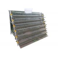 Half A Type Quail Farm Cage Wire Quail Laying Cages For Quail Farming Manufactures