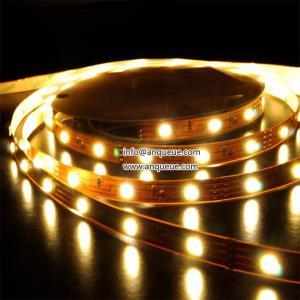 Waterproof SMD5050 Flexible Led Strip,RGB Led Strip Lights ,60LEDS Led Lights strip Manufactures