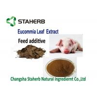 Quality Feed Additive Chlorogenic Acid Extract , Ulmoides Oliver Eucommia Extract Powder for sale
