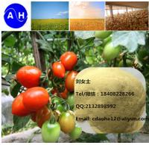 Plant Sourced 52% Amino Acids Organic Fertilizer Hydrolysis Amino Acid Powder Manufactures
