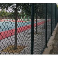 High Strength Green Wire Mesh Fence 50*100mm PVC Coated Iron Wire Material