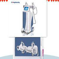 Medical Ce Approval Cryolipolysis Slimming Machine With 4 Cryo Handles Work Together Manufactures