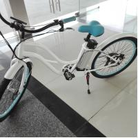 China Alloy 6061 Frame ladies Electric Bike , 10Ah Samsung lithium battery electric bicycle on sale