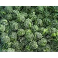 IQF Leaf Spinach/ Frozen Broccoli Manufactures