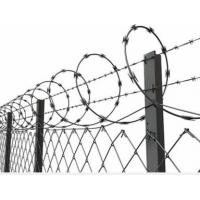 Quality Concertina Barbed Wire with Galvanized Zinc Coated Chain Link Fence for High Security for sale