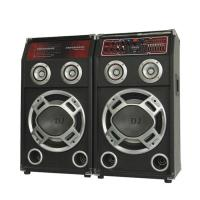 Loudest Wireless Portable Bluetooth PA Speakers With Equalizer And Audio Input
