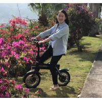 150KG Loading Capacity Folding Electric Bike LED Lights With 12inch Wheel Manufactures