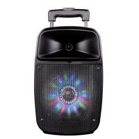 12 Inch Bluetooth Function Rechargeable Portable Trolley Speakers With Led Lights Manufactures
