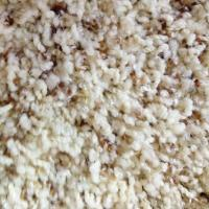 China Waterproof Soft Living Room Shag Pile Carpet 100% Nylon , 3.66m 4m Width on sale