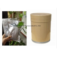 White Herb Extract Powder Stevia Leaf Extract Powder Prevent Minor Illness Manufactures