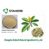 Corosolic acid Concentrated plant extract Loquat leaf extract cas 4547-24-4 Manufactures