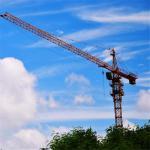 56m Boom Length China Crane Companies Qtz63 Tower Crane for Sale Manufactures