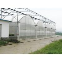 Dutch Bucket Hydroponics For Tomato Planting Manufactures