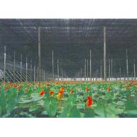 Outdoor Greenhouse Sun Shade Netting For Vegetable , Flower Growth Manufactures