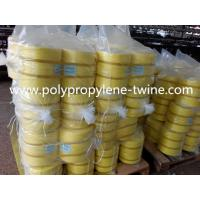 UV 100% Polypropylene PP Baler Twine / Twisted Banana Twine For Packing Diameter 1-3mm Manufactures