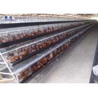 China Galvanized Layer Chicken Open House Battery Cage System For Chicken Farm on sale