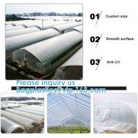China 200 Micron Uv Resistant Film Greenhouse Perforated Mulch Agricultural Film Vegetable Planting on sale
