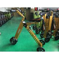 Industrial Three Wheel Electric Scooters For Children Motorcycle Zappy Scooter Manufactures