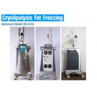 Cryolipolysis slimming equipment fat reduction cryolipolysis freeze slimming machine Manufactures