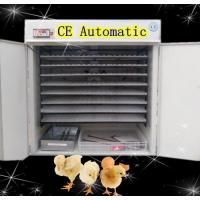 Incubator for Hatch Chicken Eggs Automatic Turning Reptile Incubators (YZITE-16) Manufactures