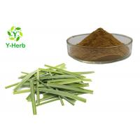 100% Pure Natural Lemongrass Powder 10:1 50:1 100:1 Citronella Grass Extract Manufactures