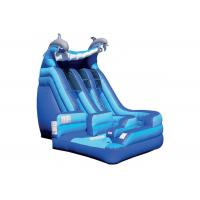 Anti - Skid Kids Inflatable Jumping Castle , Blue Giant Inflatable Playground Manufactures