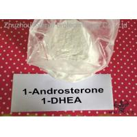 Fat Loss Prohormones 1 Dhea Powder , 1 Andro Prohormone For Lean Muscle 76822-24-7 Manufactures