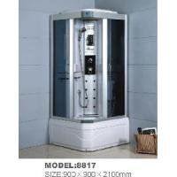 Steam Shower Product with Aluminum Shower Panel and Coated Back Glass (8817) Manufactures