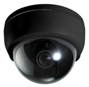 Long Range Indoor Megapixel IP Cameras With 6mm / 8mm Lens For Hotel Manufactures