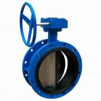 F401 Double Flanged Butterfly Valve with 1.0/1.6MPa Pressure, Available in Various Materials Manufactures