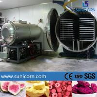China Stainless Steel Food Vacuum Freeze Dryer 6600*2100*2100mm Large Capacity on sale