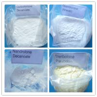 Purity Raw Testosterone Anabolic Steroid Powder Cypionate custom clearance service Manufactures