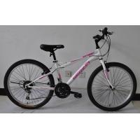 Chinese factory wholesale hot sale 26 size hi-ten steel 18/21 speed MTB bike/bicycle/bicicle Manufactures