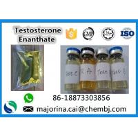 Testosterone Enanthate / Test E Injectable Muscle Building Steroid White Crystalline Powder Manufactures
