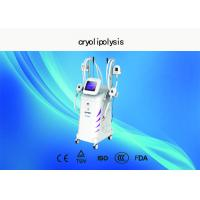 Vertical Cryolipolysis Slimming Machine , 4 - Handle Type Fat Reduction Equipment Manufactures