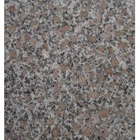 San Flower Garden Natural Granite Paving Slabs , Granite Patio Slabs For Outdoor