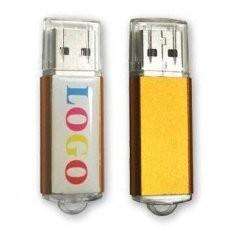 Simple professional 1GB, 2GB, 4GB, 8GB, 16GB Customized USB Flash Drive AT-221