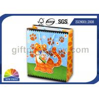 Colorful Carton Tiger Pattern Wrapping Paper Gift Bag for Children Party Gifts Manufactures