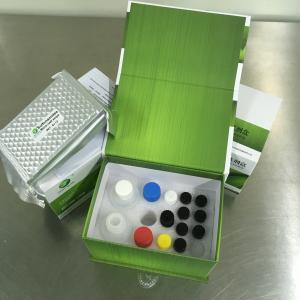LSY-10026 Melamine ELISA Detection Kit for milk, milk powder, candy, butter Manufactures