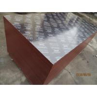 Buy cheap KINGPLEX BRAND FILM FACED PLYWOOD, COMBI CORE, WBP PHENOLIC GLUE, IMPORTED BROWN FILM from wholesalers