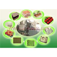 Apple tray machine Manufactures