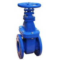 Soft Seated Cast Iron Water Gate Valve Non Rising Stem Resilient WCB Body Manufactures