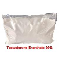 Fitness Test E Pure Testosterone Steroid Enanthate Powders Hormone CAS 315-37-7 Manufactures