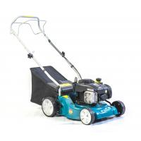Popular Petrol Lawn Mower , Petrol Grass Cutter 25-27mm 7 Level Cutting Height Plastic Deck Manufactures